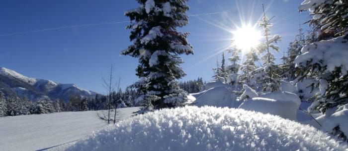 Winterurlaub in Flachau, Appartements LUNA